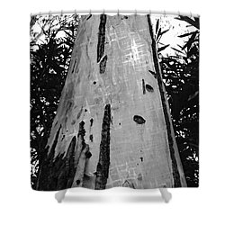 Tall Shower Curtain by Clare Bevan