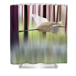 Shower Curtain featuring the photograph Tall Trees by Valerie Anne Kelly