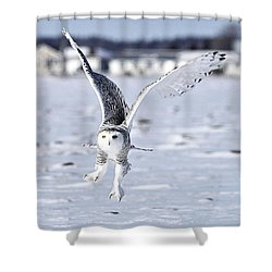 Talonted Shower Curtain