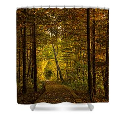 Tamarac Boardwalk Shower Curtain