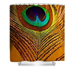 Tan Feather Shower Curtain