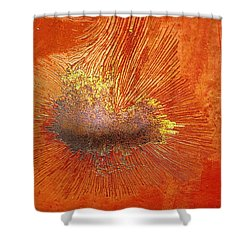Tangerine Burst Shower Curtain