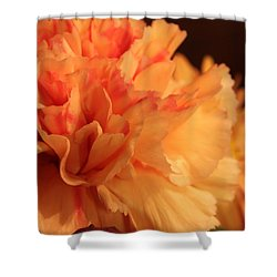 Tangerine Dreams Shower Curtain
