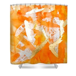Tangerine Tango Shower Curtain by Roleen  Senic