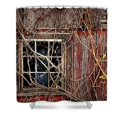 Tangled Up In Time Shower Curtain by Lois Bryan