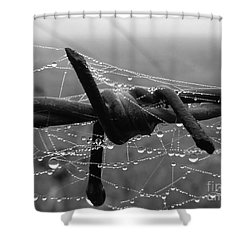 Tangled Shower Curtain