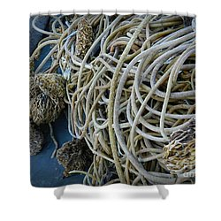 Tangles Of Seaweed 2 Shower Curtain