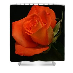 Shower Curtain featuring the photograph Tangy by Doug Norkum