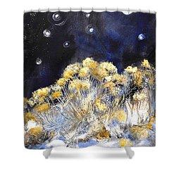 Taos Night Orbs Shower Curtain by Glory Wood