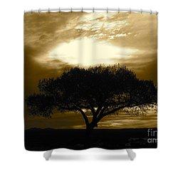Taos Tree Shower Curtain