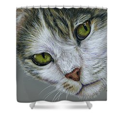 Tara Cat Art Shower Curtain