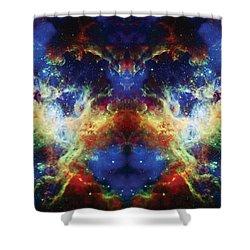 Tarantula Reflection 2 Shower Curtain by Jennifer Rondinelli Reilly - Fine Art Photography