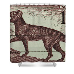 Tasmanian Tiger Vintage Postage Stamp Shower Curtain