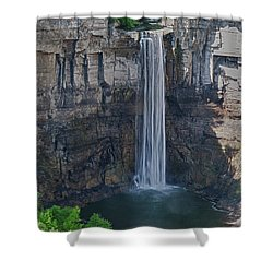 Taughannock Falls  0453 Shower Curtain