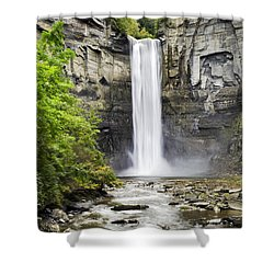 Taughannock Falls And Creek Shower Curtain by Christina Rollo