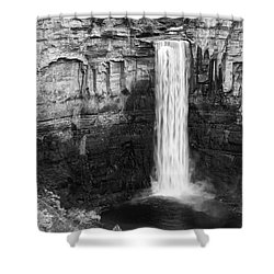 Taughannock Monochrome II Shower Curtain