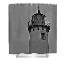 Shower Curtain featuring the photograph Tawas Point In The Rain by Daniel Thompson