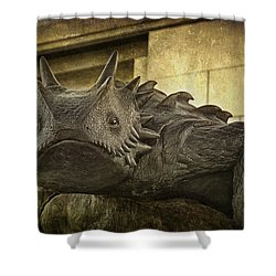 Tcu Horned Frog Shower Curtain