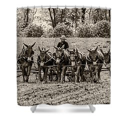 Team Of Eight Shower Curtain by Guy Whiteley