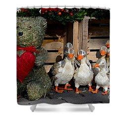 Teddy Bear With Flock Of Stuffed Ducks Shower Curtain by Imran Ahmed