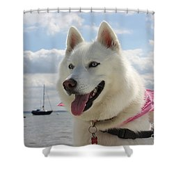 Shower Curtain featuring the photograph Tehya by Vicki Spindler