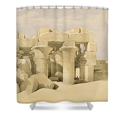 Temple Of Sobek And Haroeris At Kom Ombo Shower Curtain by David Roberts