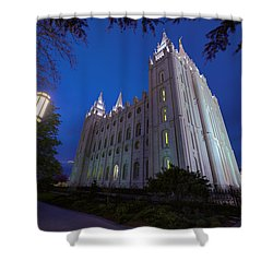Temple Perspective Shower Curtain