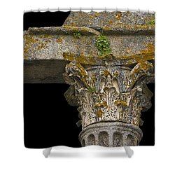 Temple Ruin Fragment Shower Curtain by Heiko Koehrer-Wagner
