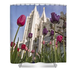 Temple Tulips Shower Curtain