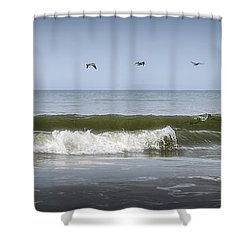 Shower Curtain featuring the photograph Ten Pelicans by Steven Sparks
