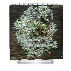 Tenacity Shower Curtain by Michelle Twohig