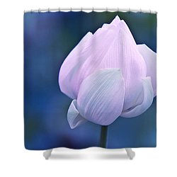 Tender Morning With Lotus Shower Curtain by Jenny Rainbow