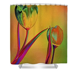 Tender Touch Shower Curtain