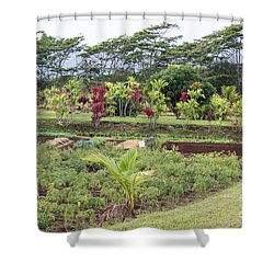 Shower Curtain featuring the photograph Tending The Land by Suzanne Luft