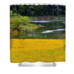 Tennessee Black-eyed Susan Field Shower Curtain