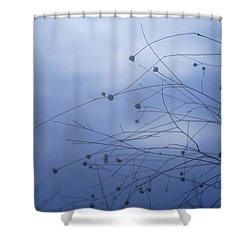 Tentaculos Del Cielo Shower Curtain by Guido Montanes Castillo