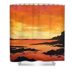 Tequila Sunset Shower Curtain by Chad Berglund