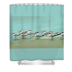 Tern Tern Tern Shower Curtain