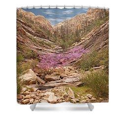 Terrace Canyon Shower Curtain by Alan Socolik