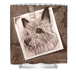 Terrier As Optical Illusion Shower Curtain