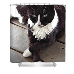 Tess The Temptress Shower Curtain