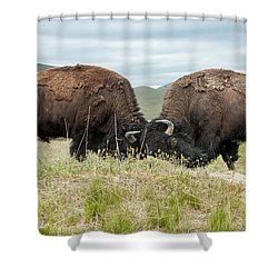 Shower Curtain featuring the photograph Test Of Strength by Jack Bell