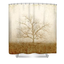 Test Of Time Shower Curtain by Scott Pellegrin