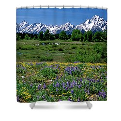 Teton Grandeur Shower Curtain by Ed  Riche