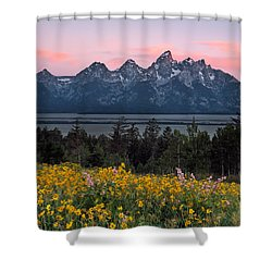 Teton Spring Shower Curtain by Leland D Howard