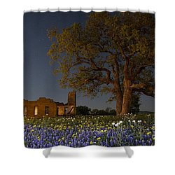 Texas Blue Bonnets At Night Shower Curtain