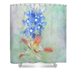 Texas Bluebonnet And Indian Paintbrush Shower Curtain by David and Carol Kelly