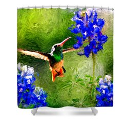 Da161 Texas Bluebonnet Hummingbird By Daniel Adams Shower Curtain