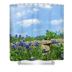 Texas Bluebonnets 08 Shower Curtain by Robert ONeil