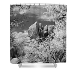 Texas Canyon  Shower Curtain by Michael McGowan